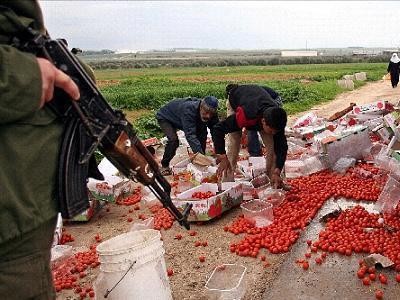 settlement-fruitoogst met geweer